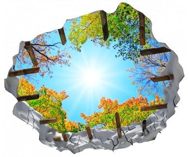 Наклейка на потолок Светящее сквозь деревья солнце