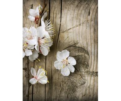 Наклейка на пол Весенние цветы на фоне дерева