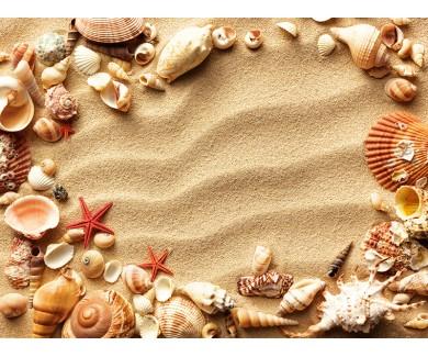 Наклейка на пол Морские раковины с песком в качестве фона